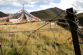 Tibet, terre des braves